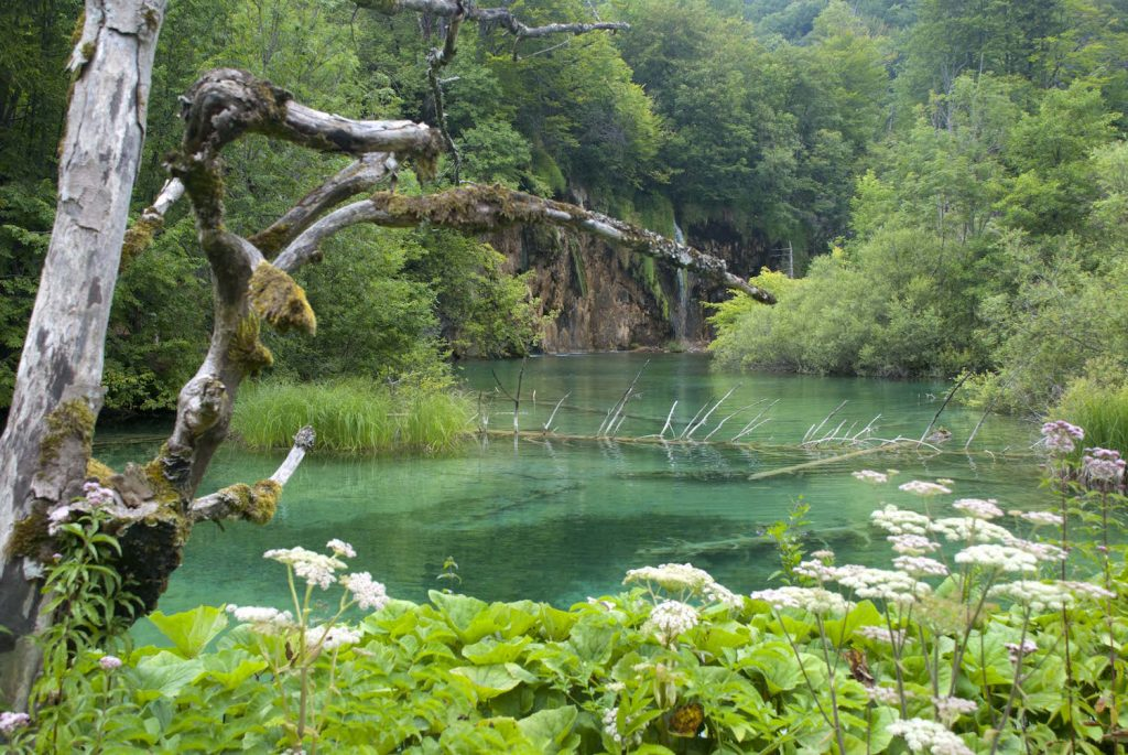 Plitvice Lakes National Park 16
