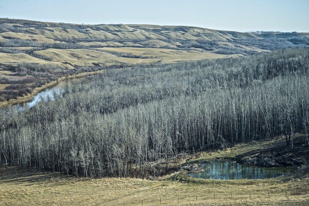 prairie-9
