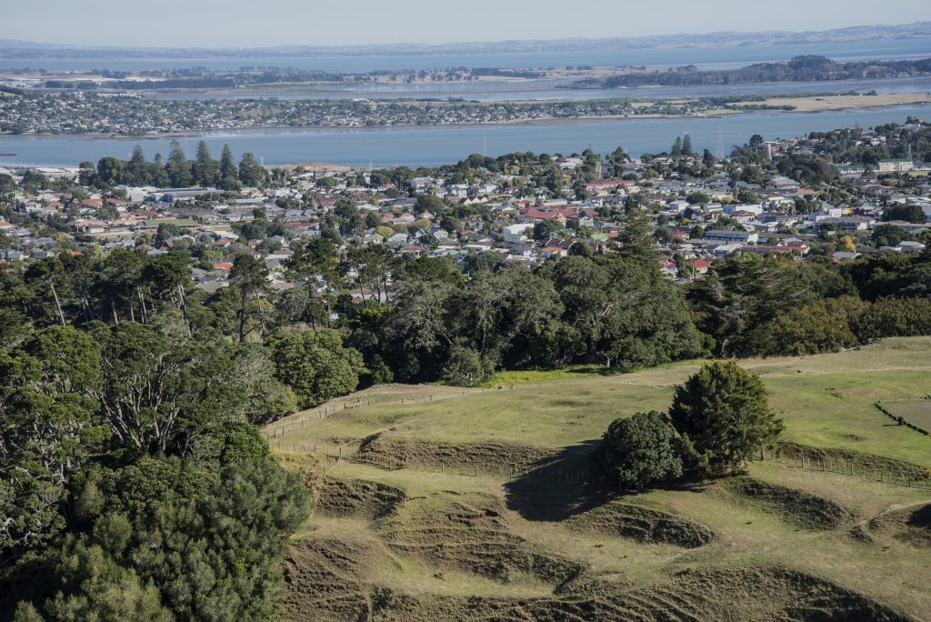 City of Auckland from Single Tree Hill