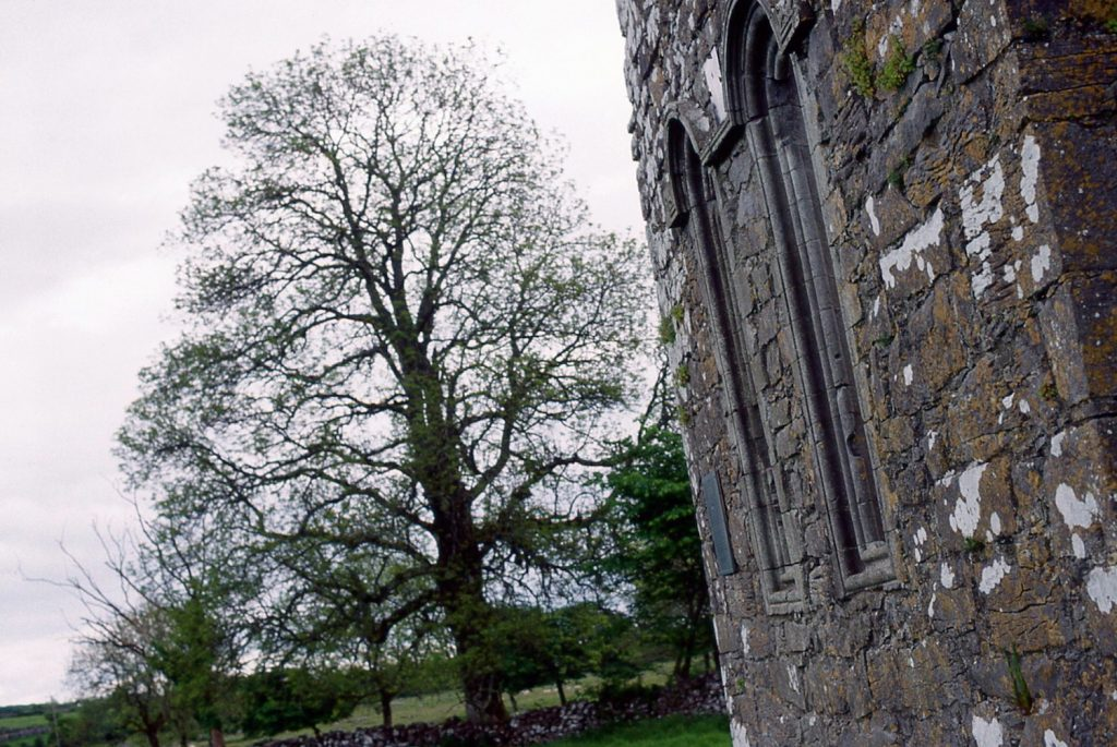 Innishmaine Abbey Church