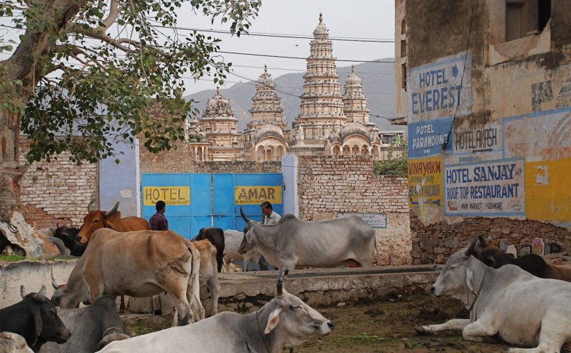 The Holy City of Pushkar