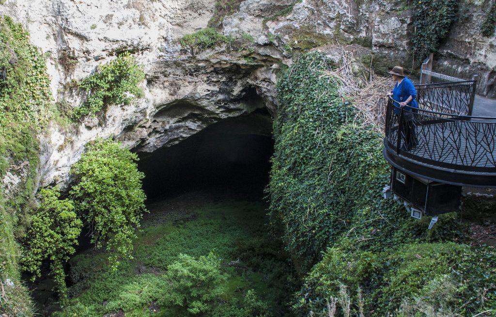 Cave Garden